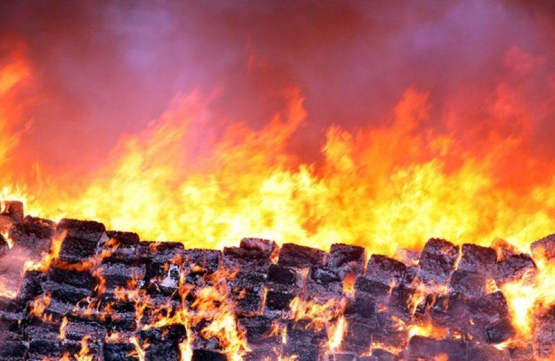 Сожжение 134 тонн марихуаны в Тихуане (фото)