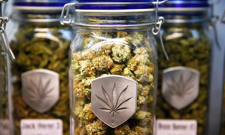 Сколько марихуаны считается медицинской?