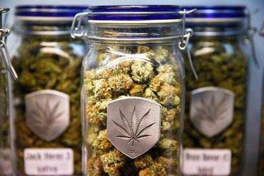 medical marijuana, 420, thc, cbd,