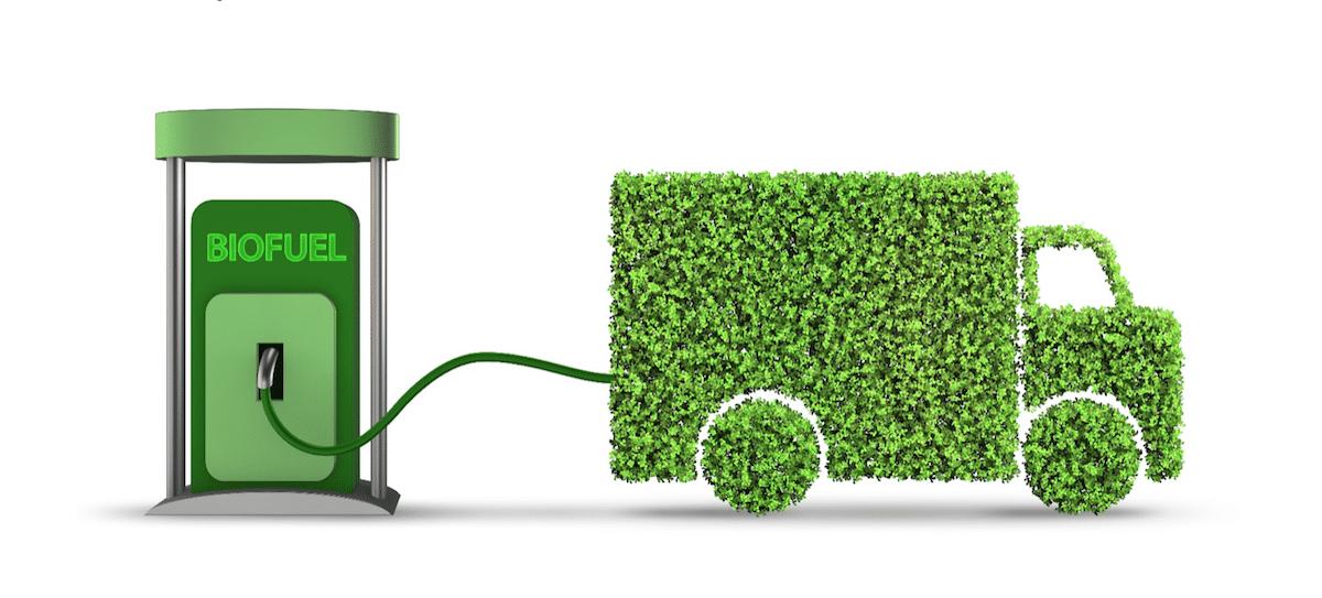 биотопливо, растительное топливо из конопли,