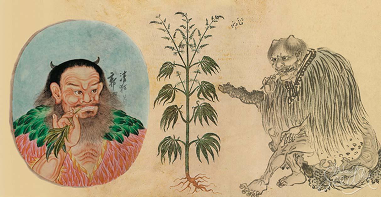 weed, cannabis, mj, ancient china,