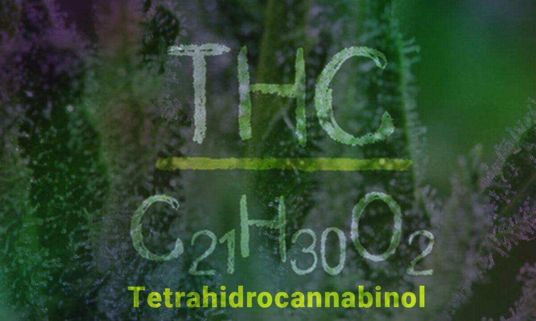 Тетрагидроканнабинол (ТГК)