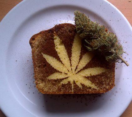 cannabis, weed, errors seeds, seedbank,