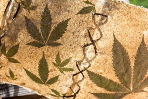 ancient cannabis, cannabis, weed, pot, hemp,