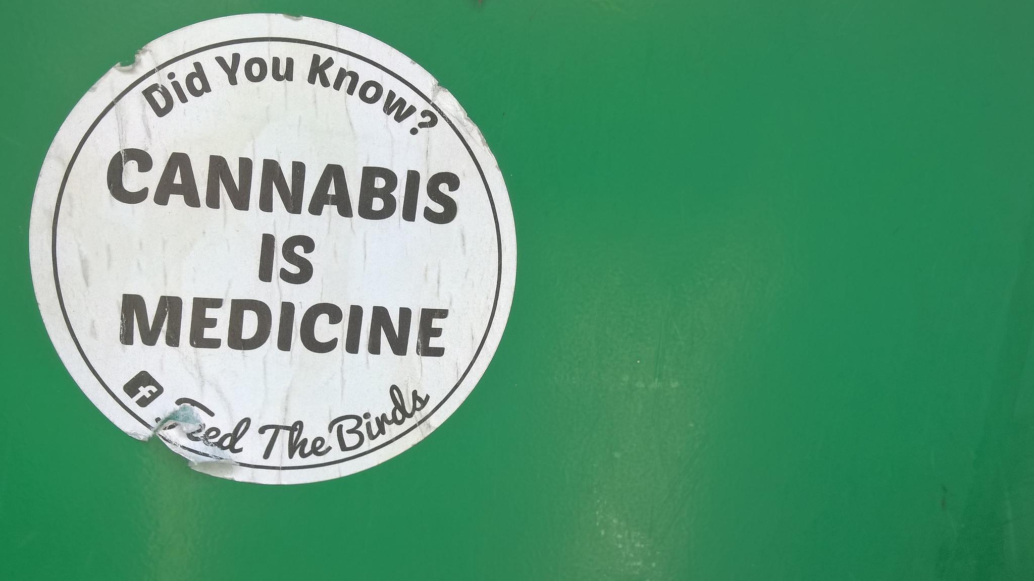 cannabis, weed, errors seeds, pot, oil, hemp,