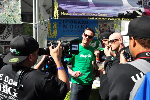 cannabis cup, los angeles, california, medical marijuana,