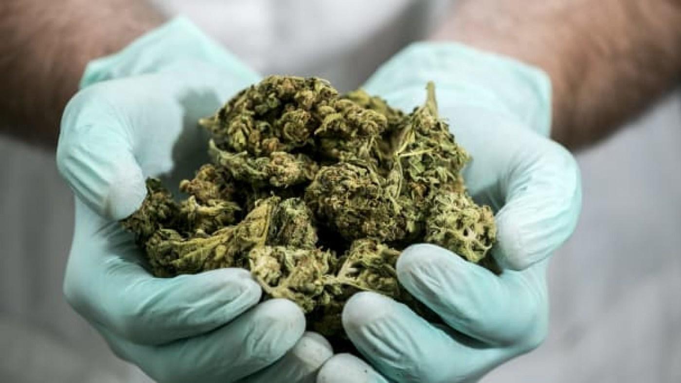 medical marijuana, weed, 420,