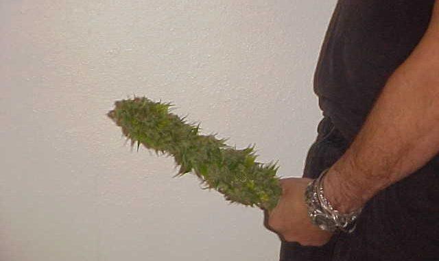 Медицинская марихуана превзойдёт «Виагру»