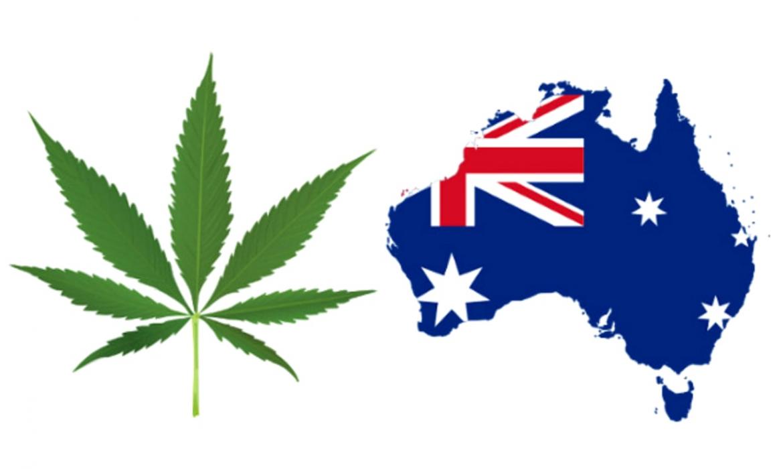 Конопляная продукция ч.4 — Австралия
