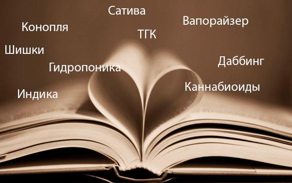 Словарь терминов для начинающих