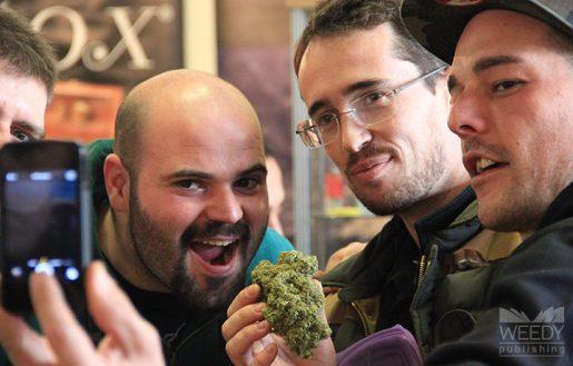 выращивание марихуаны, выставка конопли, производство из конопли,