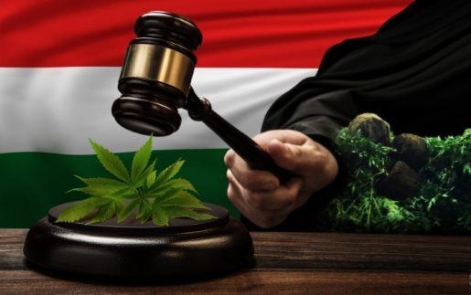 каннабис, Венгрия, легальность марихуаны в Венгрии,