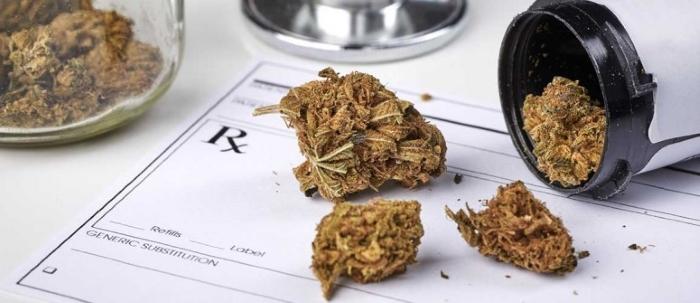 Печень на влияет конопля ли границу через семена марихуаны