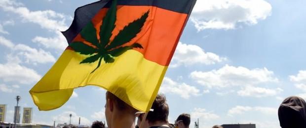 конопляный-бум-в-Германии