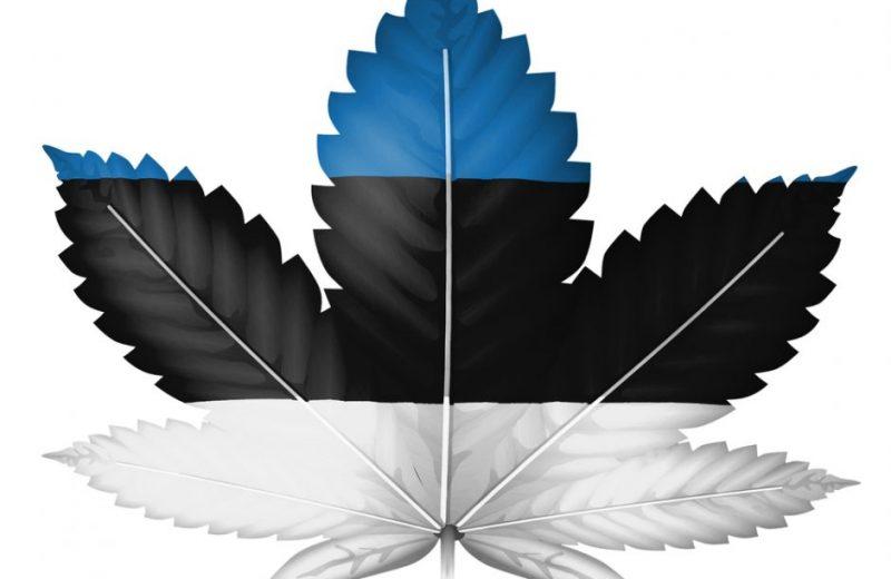 медицинская марихуана, рекреационная марихуана, опрос, марихуана, конопля,