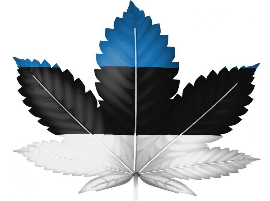 Эстонцы одобряют легализацию марихуаны, но..!
