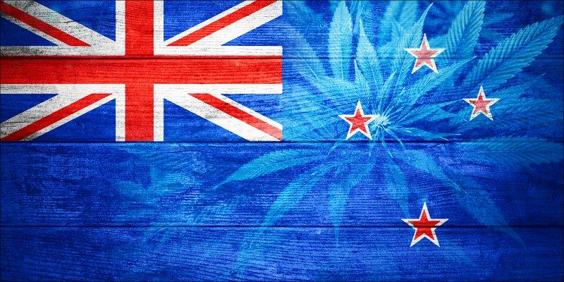 Каков статус каннабиса  в Новой Зеландии?