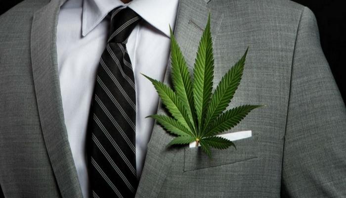 Использование марихуаны в качестве политической игры