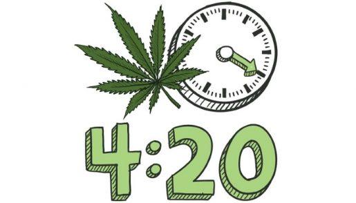 marijuana, cannabis, weed, ganja, каннабис, конопля, марихуана, курение марихуаны, как правильно курить марихуану, errors seeds, эрор сидс, международный день марихуаны, публичное курение марихуаны, движение за легализацию каннабиса,