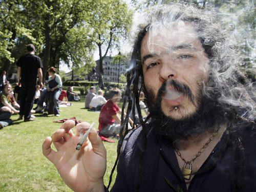 marijuana, cannabis, hash, weed, 420, mj, madrid, usa, spain, trafficking,
