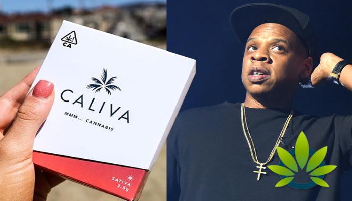 джей зи, jay z, cannabis buziness, конопляный бизнес, марихуана, рэпер, канна-индустрия, калива