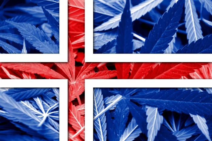 Рейкьявик, Исландия – статус марихуаны ч.1
