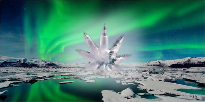 Исландия и марихуана