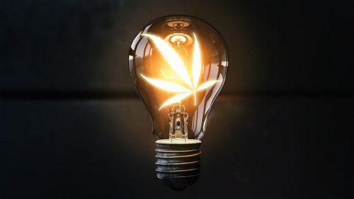 Возможно ли получить электричество из конопли?