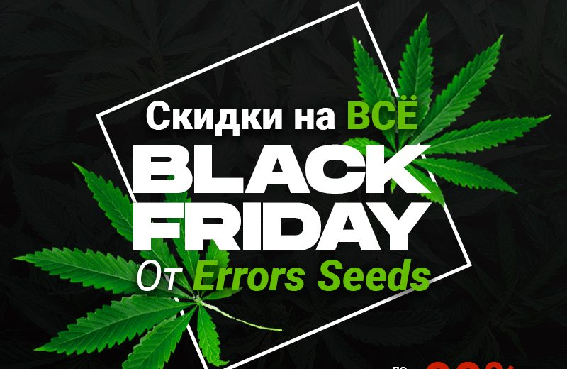 Черная пятница с магазином Errors Seeds